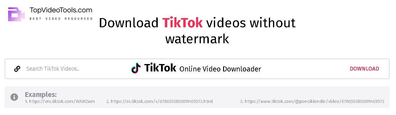 Best Free TikTok MP4 Video Downloader Online Tools
